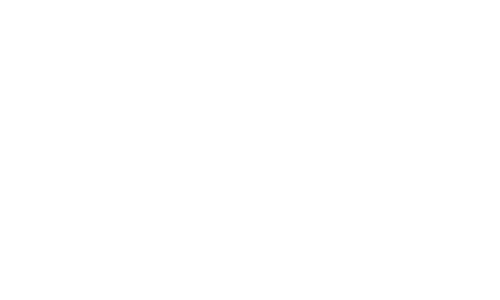 SiliconDust EBay Shop